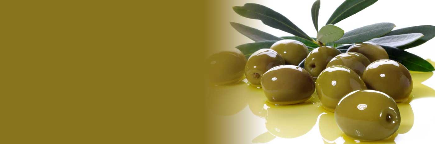 Italian Organic Antipasti Products